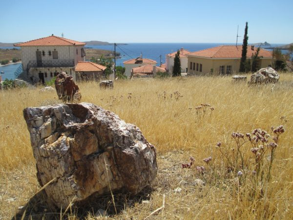 The Museum of the Lesvos Petrified Forest at Sigri. (Harrison Blackman)