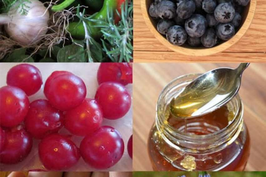 home remedies that work use natural cures to promote wellness