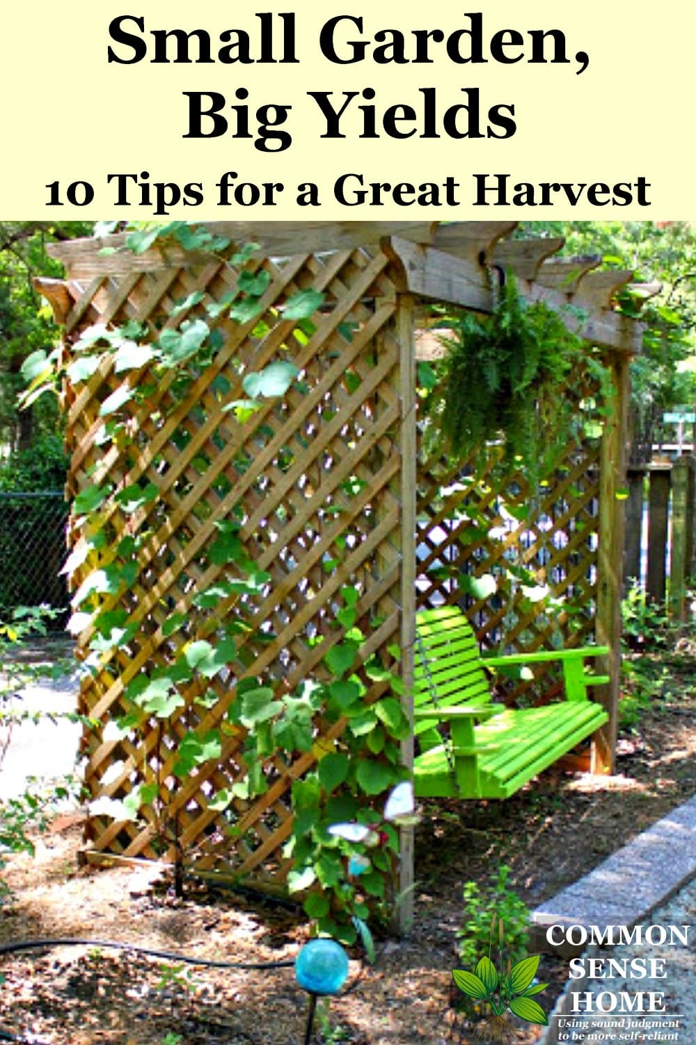Vining plants on trellis over swing in small garden edible landscape