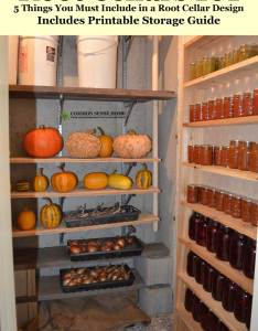 Root cellar with squash and vegetables on shelves canning jars right also cellars design use mistakes to avoid rh commonsensehome