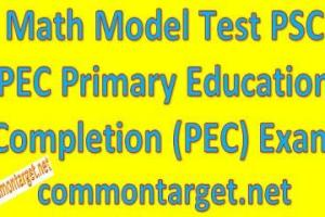 Math Model Test PSC PEC