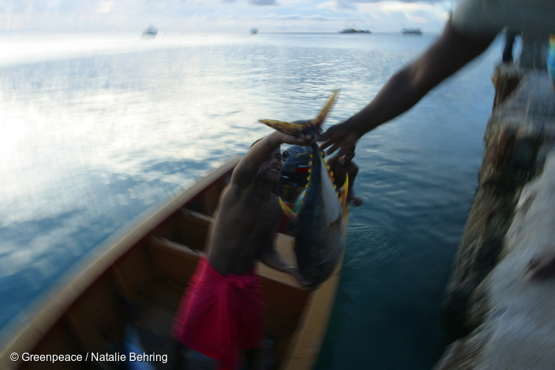 Fisheries in the Western Pacific Ocean commsforchange.com.au