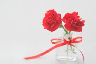 母の日にカーネーションをプレゼント!色別花言葉をご紹介!