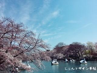 井の頭公園の桜の時期の混雑状況やボートの料金と待ち時間は?