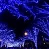 青の洞窟SHIBUYAの日程、時間、場所や行き方は?混雑や口コミも紹介!