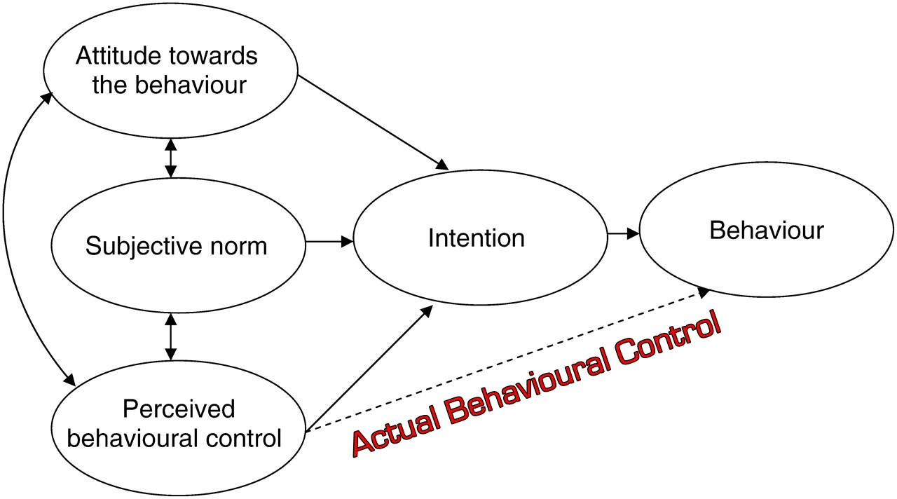 The Theory of Planned Behaviour: Organizational Behaviour