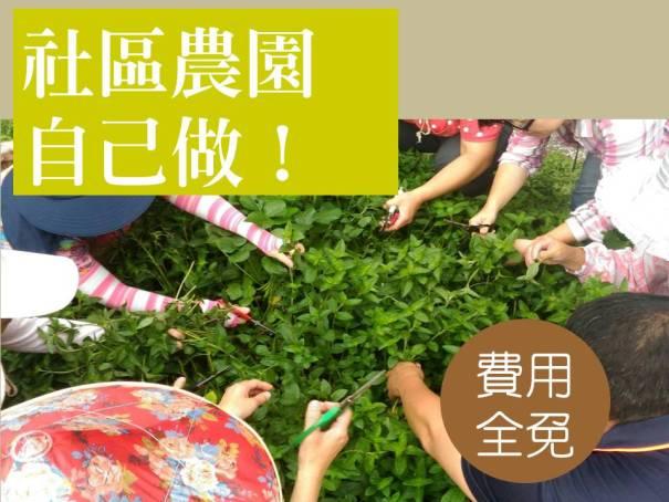 大新農園工作坊官網