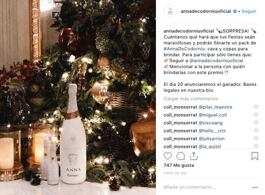 anna codorniu Instagram Community Internet