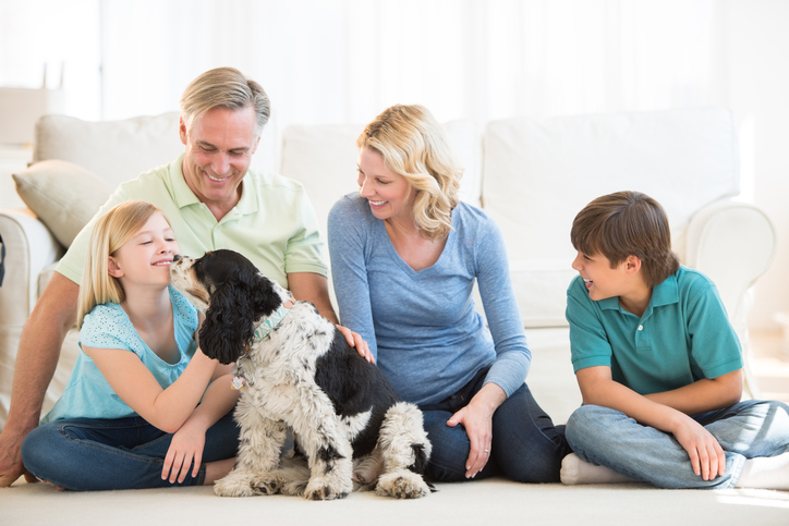4 Ways To Create A Family-Friendly Living Room