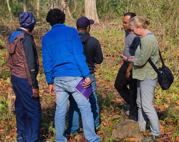 Conservationists standing together in a forest holding gear, talking and looking around