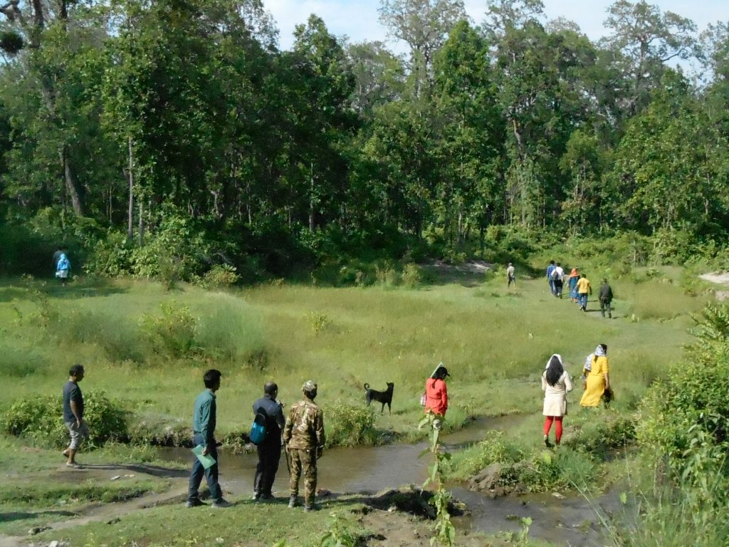 Group of trainees in Nepal at wildlife training session walk through the forest