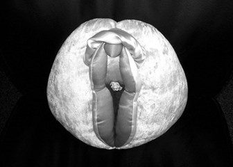 Vulva or vagina, which is which?