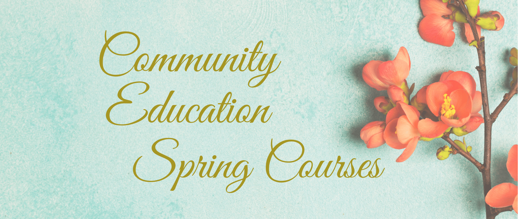 Spring Courses 2021