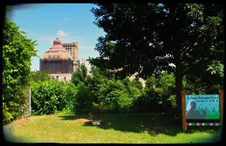 Dr. George Washington Carver Edible Park