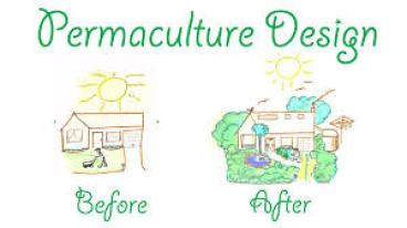 Cute visual of simply showing what permaculture strives to do to our landscape. From www.permaculturevisions.com