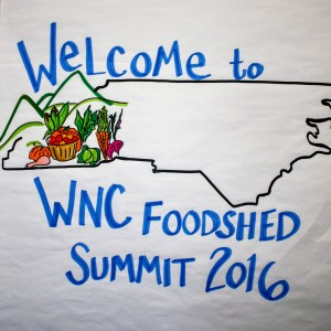Harvest themes and indicators from 2016 WNC Foodshed Summit by graphic facilitator Caryn Hanna.