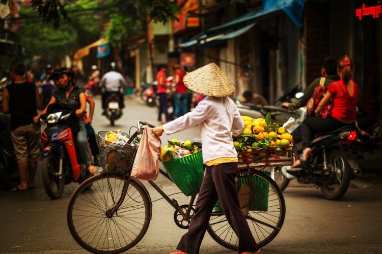 Vietnamese Dining