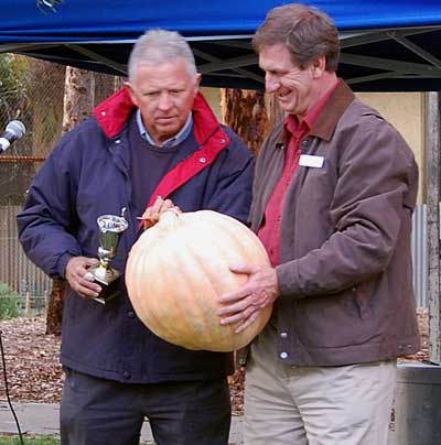 Veteran gardener, Malcolm Campbell, judges the pumpkin competition.