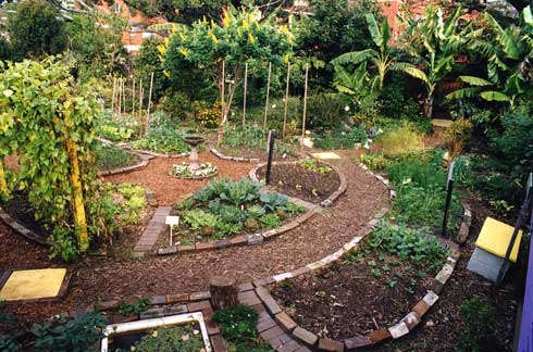 Top Landscape Gardening February 2013