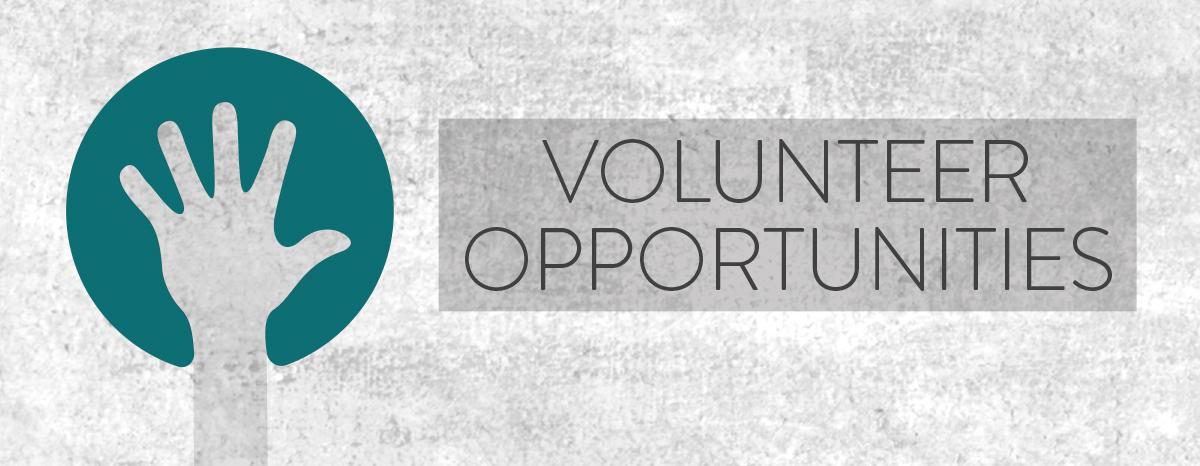 2015 Volunteer Guide