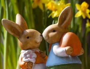 easter bunny easter rabbit bunny couple  e