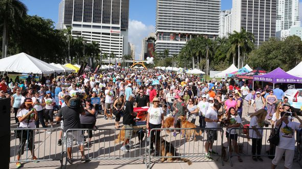 Walk for the Animals benefits the Humane Society