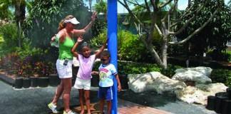 Another Splashtacular Summer in store at Miami Seaquarium