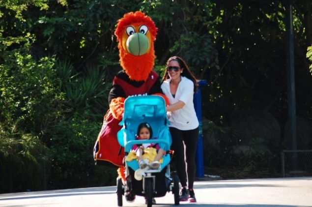 Miami Wild Run & Walk raising funds to benefit at-risk youth