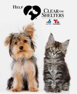 ClearTheShelters2017