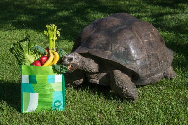 Whole Foods donating 5% of net sales to Zoo Miami Foundation
