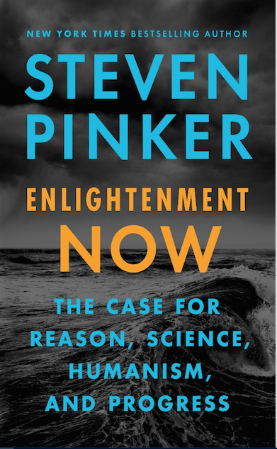 Steven Pinker's new book presents the big picture of human progress