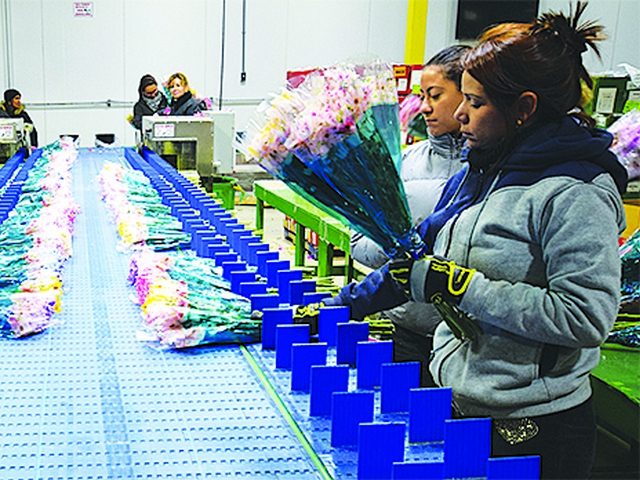 Prime Air Cargo is a centerpiece in Miami's blossoming flower transport business