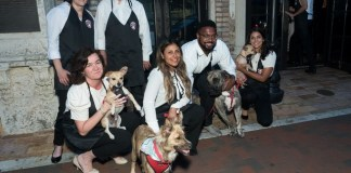 Paws4You, Chopard to present 'Diamonds are Forever' Gala