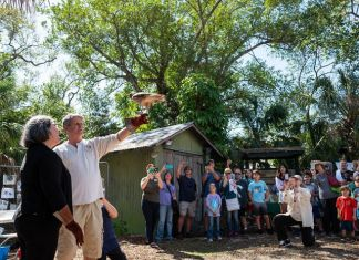 Crowds flock to seventh annual Bird Day activities at Tropical Audubon Society