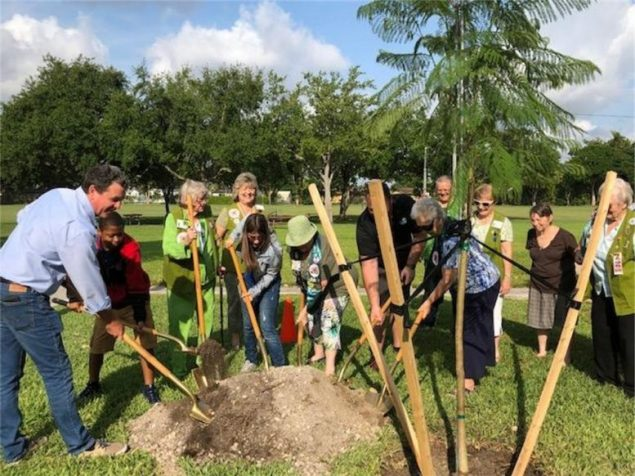 Cutler Ridge Woman's Club donates Jacaranda tree to town