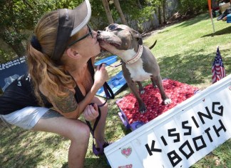 The Barnacle State Park goes to the dogs during 'Woofstock'