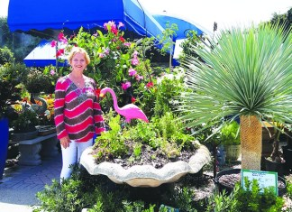 Miami Nursery Encourages Local Residents To Go Native
