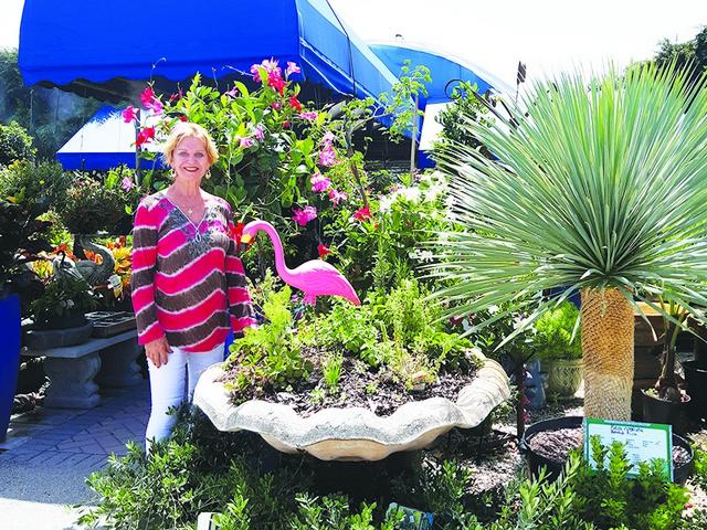 Miami Nursery Encourages Local Residents To Go Native