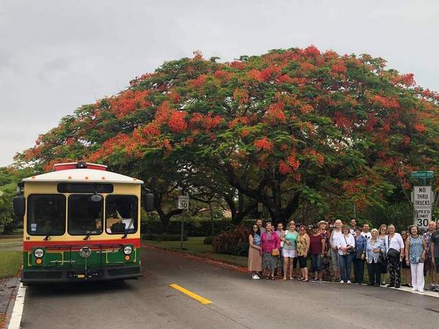 Tropical Flowering Tree Society keeps City Beautiful blooming