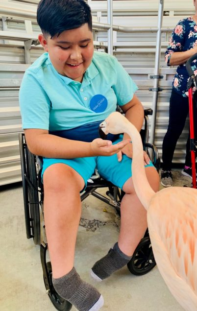 Jungle Island hosts 12-year-old on Up-Close VIP animal tour