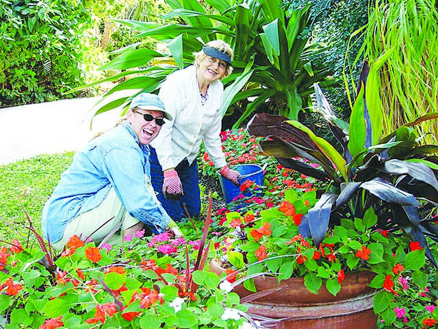 Why volunteering is so important at Pinecrest Gardens