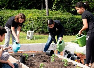 School's garden program thrives with some help from The Brick