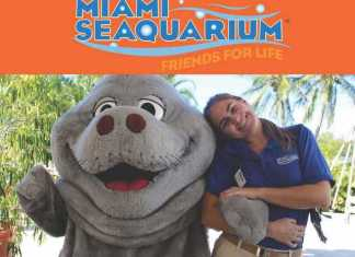 Miami Seaquarium to host Job Fair Thursday, Dec. 12