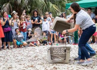 Miamians flock to activities for eighth annual Bird Day