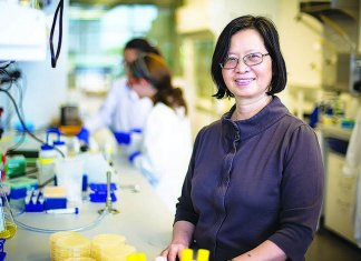 Researchers investigate if antibodies from other viral infections help fight COVID-19