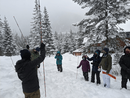 snow probe demonstration