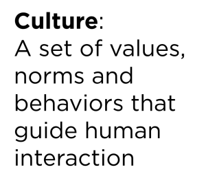 culture-definition