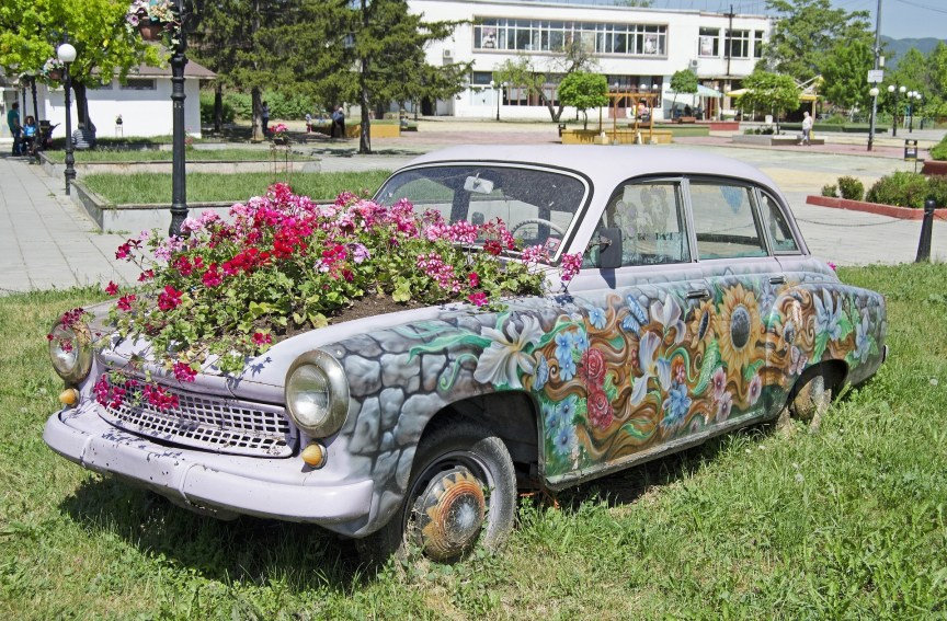 disused car with flowers in the engine