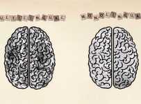 Os benefícios de um cérebro bilíngue