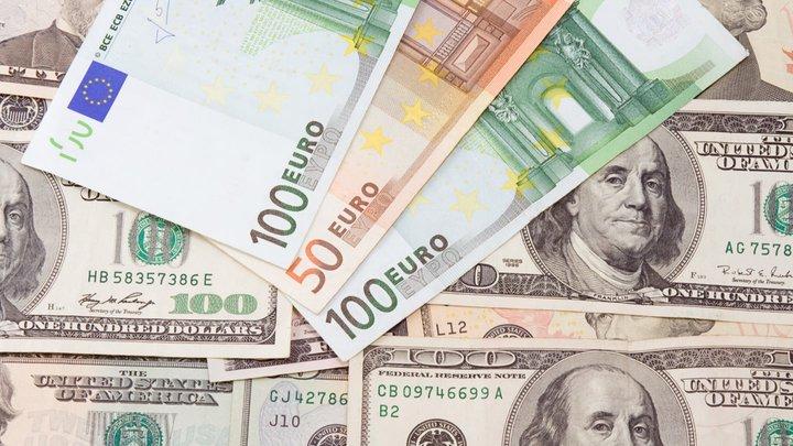 Cambiar Euros a Dolares 💸